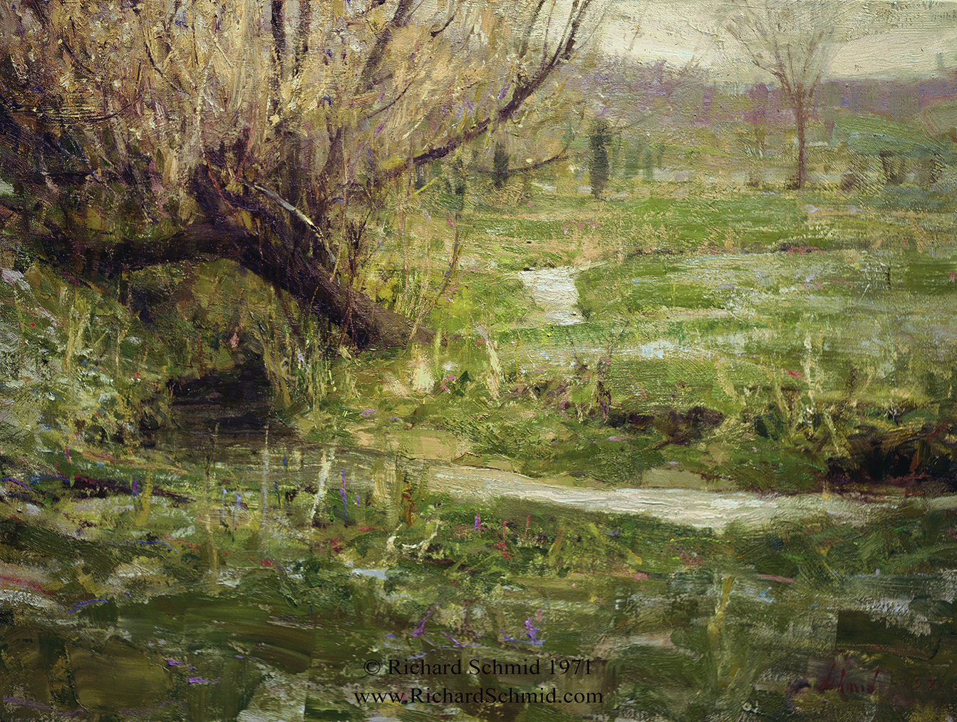 Spring Frost by Richard Schmid
